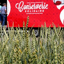 Conserverie solidaire