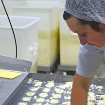 Production alimentaire