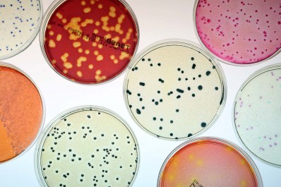 Analyse microbiologique