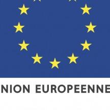 Logo FEDER Wallonie