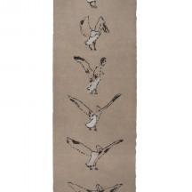 Brigitte Corbisier, Pélicans, gravure à la pointe sèche deux cou