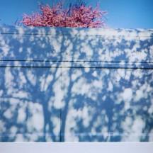 prise de vue vernissage 'Aux lueurs de printemps'