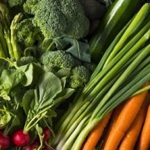 Alternative aux produits phytosanitaires