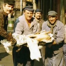 Des ouvriers de la cokerie de Flémalle