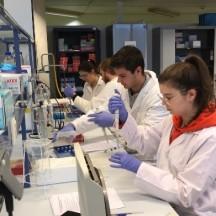 Techniques génétiques : GIGA formation !