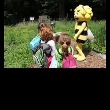 Visite rucher dans le cadre de l'événement