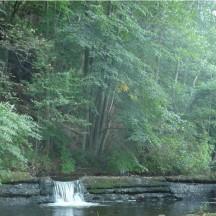 Ruisseau de Winamplanche – Passe à poissons avant travaux