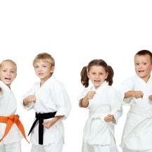 Karaté-Judo