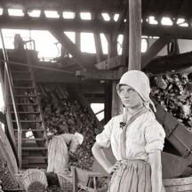 Charbonnage de Wergifosse à Herve/G.Marissiaux (1904)