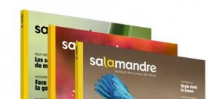 Nous avons aimé... La Salamandre, en 3 versions !