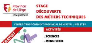 Stage d'été à l'Ecole Polytechnique et à l'IPES de Herstal du 26 au 30 août !