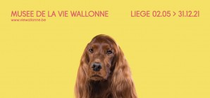 LOVE - Animal Stories, la nouvelle exposition du Musée de la Vie wallonne