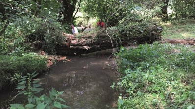 Ruisseau d' Asse