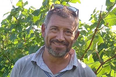 Vignoble Les Marnières