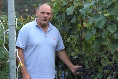 Domaine Vin des Crêtes