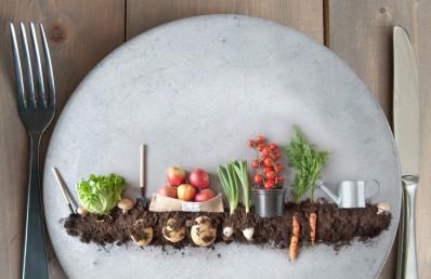 Changer ses habitudes pour une alimentation plus durable