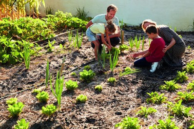Jardin collectif