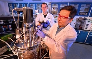 L'ingénieur.e biochimiste