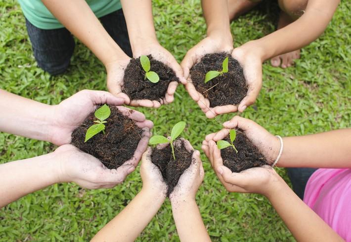 Inclusion citoyenne via la création de jardins collectifs
