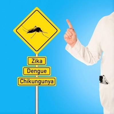 Dengue - Zika